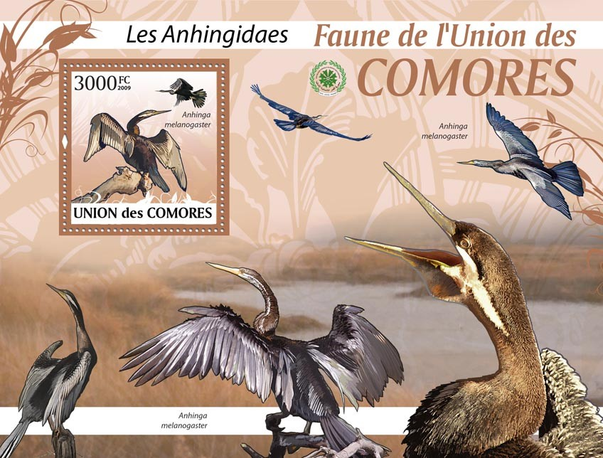 Snake bird Anhinga melanogaster?タᆵ - Issue of Comoros postage stamps